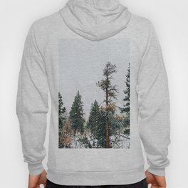 Snow Capped Pine Trees Hoody