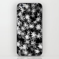 moss iPhone & iPod Skins featuring Moss by Crazy Thoom