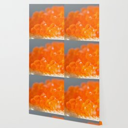 Sandwich with red caviar on a gray background Wallpaper