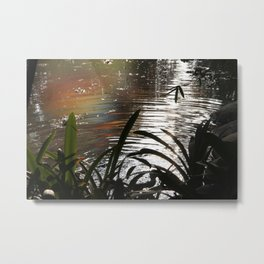 Rainbow in the pond Metal Print