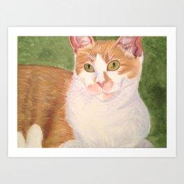 A cat's meow. Art Print