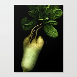 Green Radish and Spinach Canvas Print