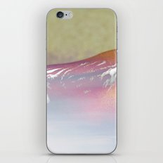 Out of the Mist iPhone & iPod Skin