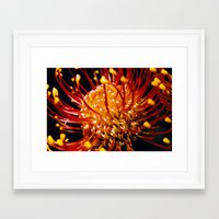 candy Framed Art Prints featuring Candy by Stephen Linhart
