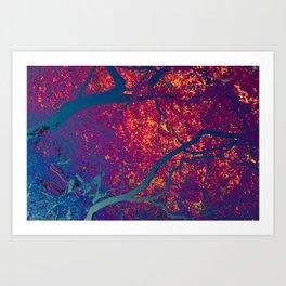 Arboreal Vessels_Basilar Artery Art Print