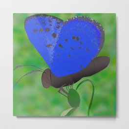 Karner Blue Butterfly Metal Print