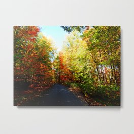 Into the Fall Forest Metal Print