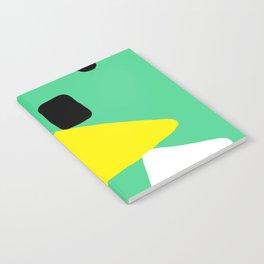 The Balancing Act Notebook