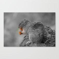 Squirrel BW Canvas Print