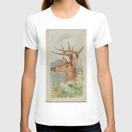 Vintage White Tail Deer Illustration (1888) T-shirt