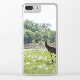 Out for a Stroll Clear iPhone Case