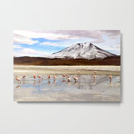 Pink Flamingos & a Peak in the Andes Metal Print
