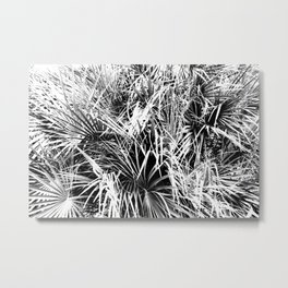Palm Fronds In Black and White Abstract Photography Metal Print