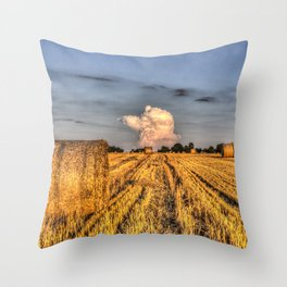 The English Summer Farm Throw Pillow