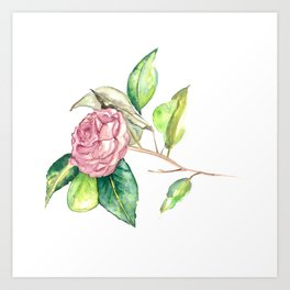 Flower • Botanical Illustration | Art Print | Flower Art | Watercolor Art Print