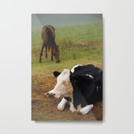 Cow and horse Metal Print