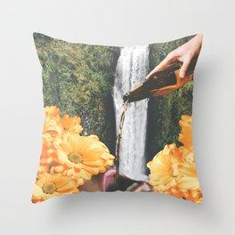 Chasing Waterfalls Throw Pillow