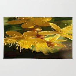 Turkish St Johns Wort Wild Flower Vector Image Rug