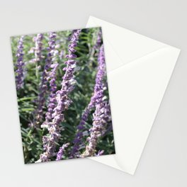 in my backyard.. Stationery Cards