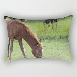 Wild Spanish mustang colt Rectangular Pillow