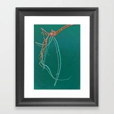 Shrimp Skull Framed Art Print