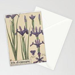 Maurice Pillard Verneuil - Étude de la plante (1903): Spanish Iris Stationery Cards