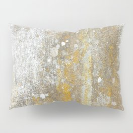 Wall Painting from Nature Pillow Sham