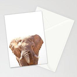 Elephant illustration Stationery Cards