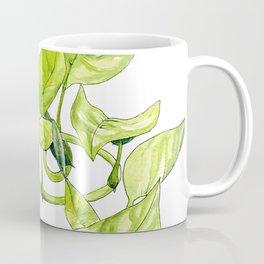 Devils Ivy Illustration Coffee Mug