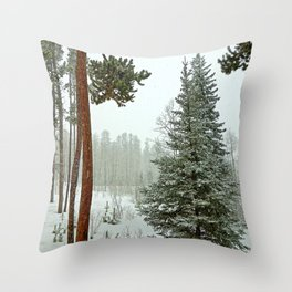 Winter Park Late Spring Study 2 Throw Pillow