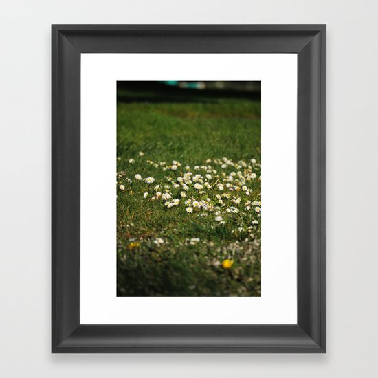 Dasies Framed Art Print