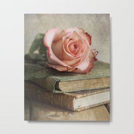 Smell of fresh rose Metal Print