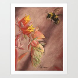 Succulent Delight Art Print