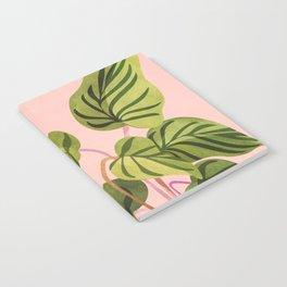 Upstart / Tropical Plant Notebook