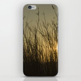 There and back XVI iPhone Skin