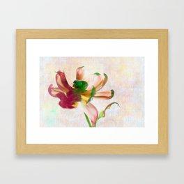 Dancing Tulip Framed Art Print