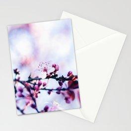 Hill Cherry Flower - Yamazakura Sakura Stationery Cards