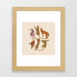 Adria Cheetahs Framed Art Print