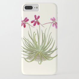 Pinguicula gypsicola iPhone Case