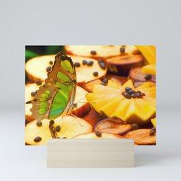 Butterfly Fruit Art For Animal Lover Mini Art Print