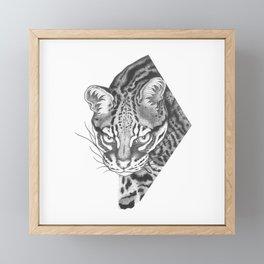 Feline Framed Mini Art Print