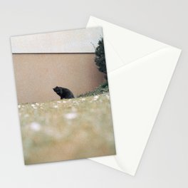 neat & tidy Stationery Cards
