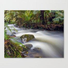 Cement Creek #1 Canvas Print