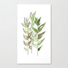 leaves12 Canvas Print