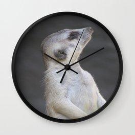 Sentry Meerkat Wall Clock