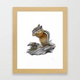 Chipmunk and mushrooms Framed Art Print