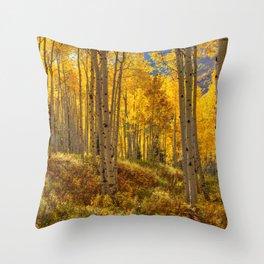 Autumn Aspen Forest in Aspen Colorado USA Throw Pillow