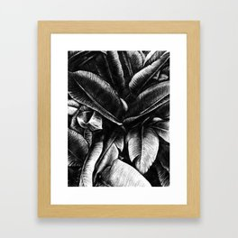 Dark Palm Leaves Framed Art Print