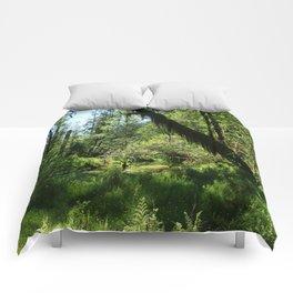 Hoh Rainforest Tones Comforters