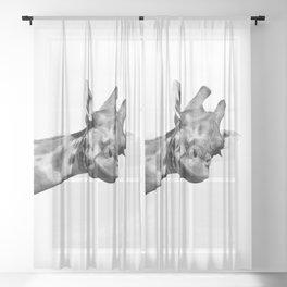Black and white giraffe Sheer Curtain